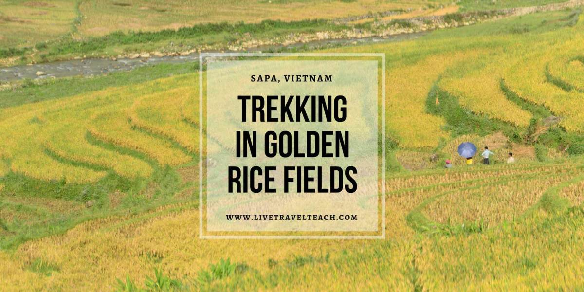 The Best Season to Trek in Sapa, Vietnam