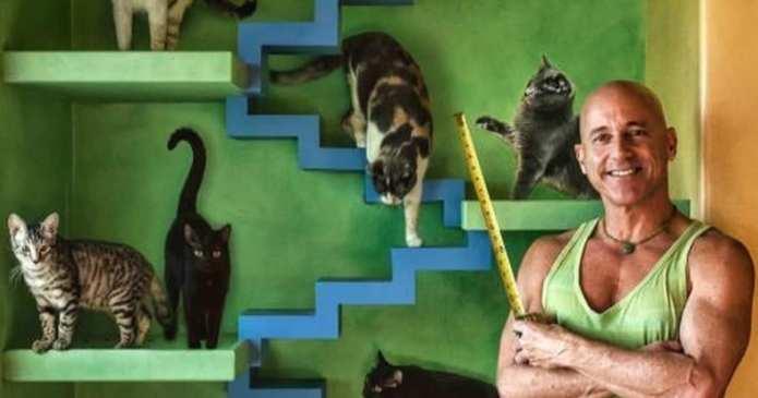 Un iubitor de pisici a investit o avere pentru a-și transforma casa într-un loc de joacă pentru acestea