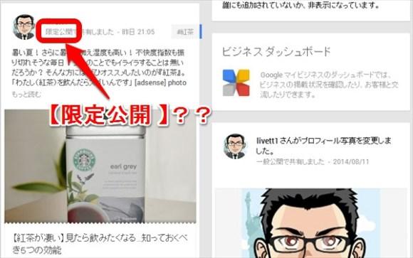 WPとgoogle+(ぐぐたす)連動は注意が必要-限定公開-@livett1