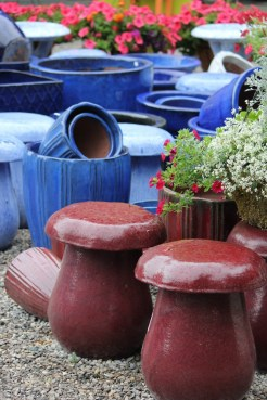 flower pots summer in garden center