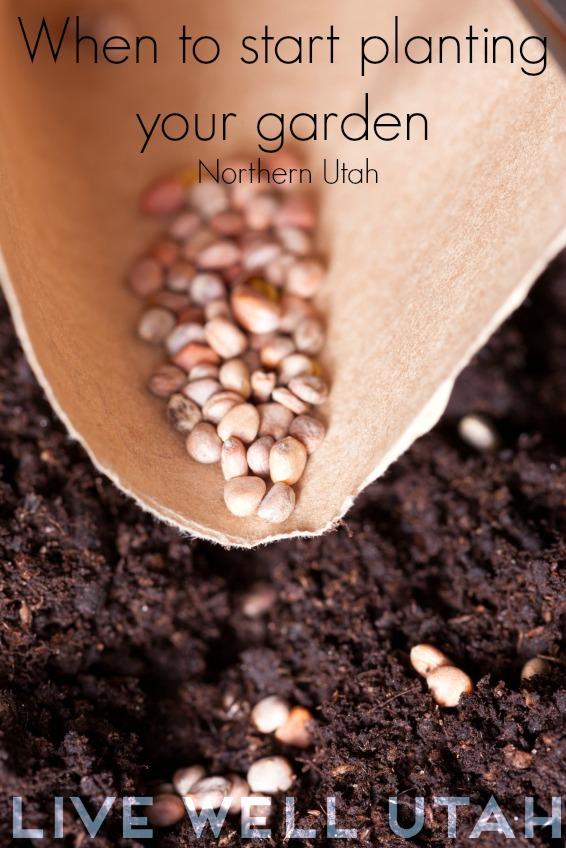 When to start planting garden in Utah livewellutah.org