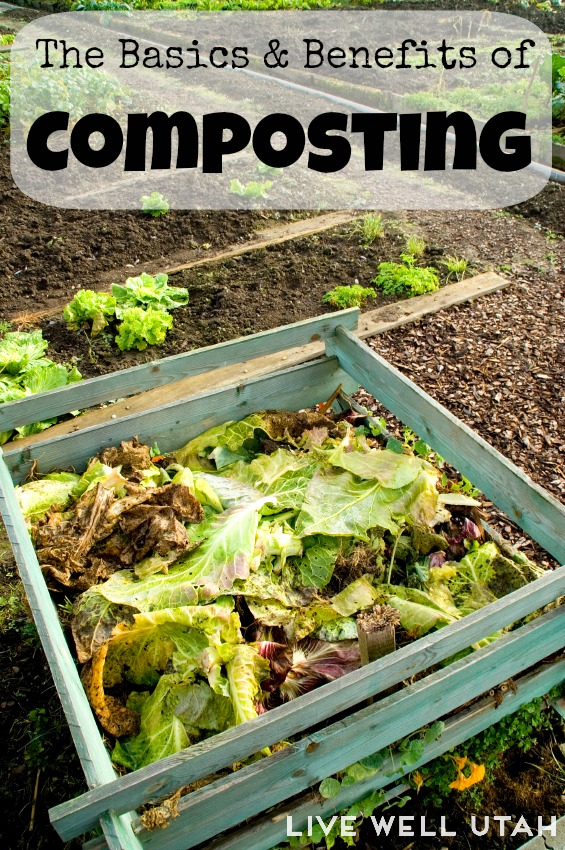 Learning the basics of composting - LiveWEllUtah.org