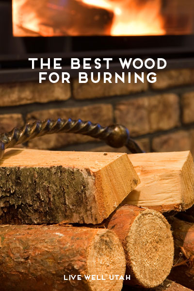 The Best Wood For Burning Live Well Utah