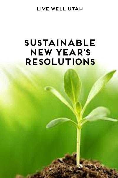 Sustainable New Years Resolutions