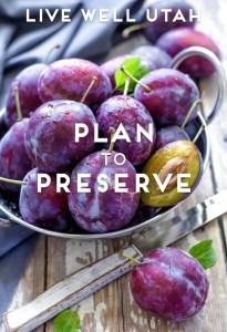 Plan to Preserve
