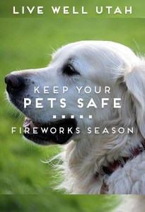 Keep Your Pets Safe