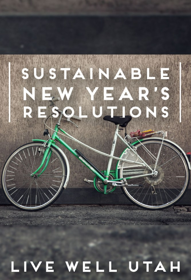 Sustainable Resolutions.jpg