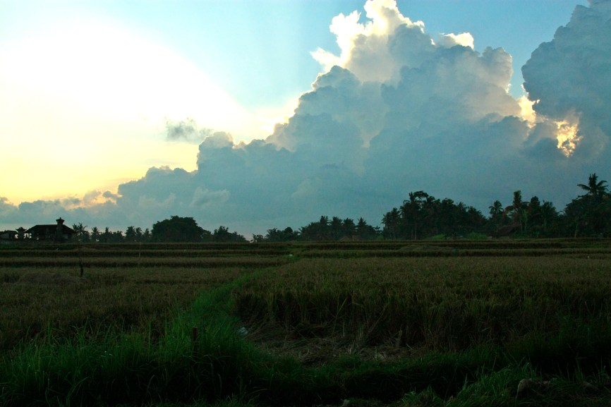 Sun setting over the rice paddies