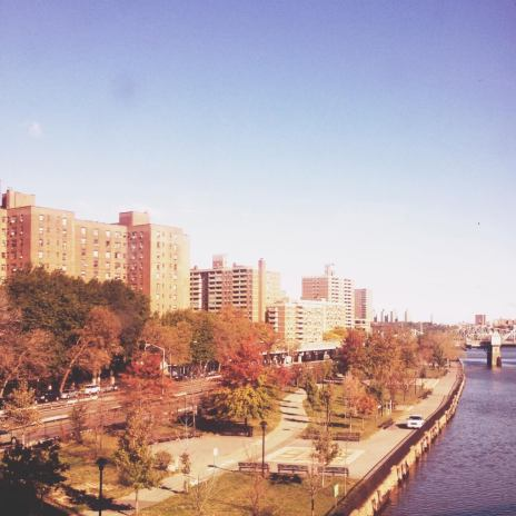 Harlem Projects