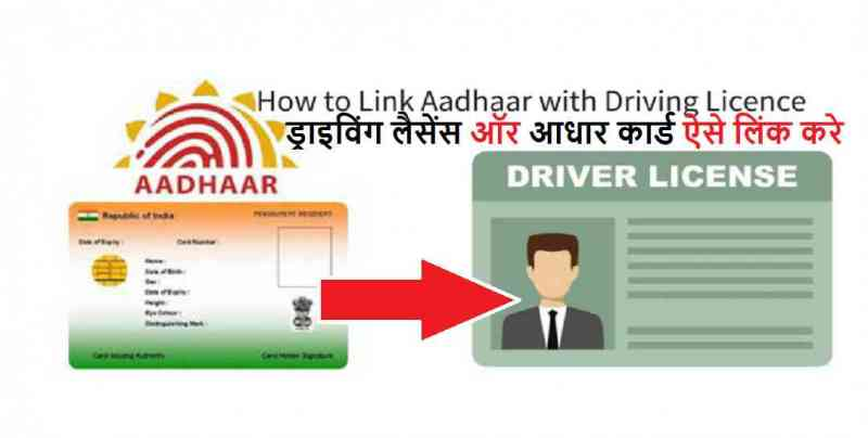 driving license and Aadhar Card
