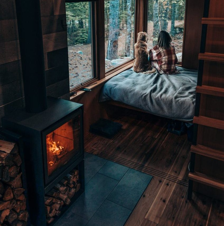 unrecognizable woman with dog resting in cozy bedroom