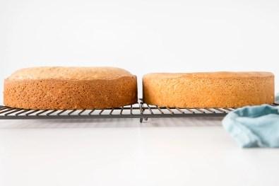 Image result for cake straps