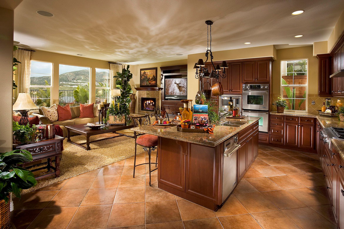 Kitchens In Today's Open Concept Home
