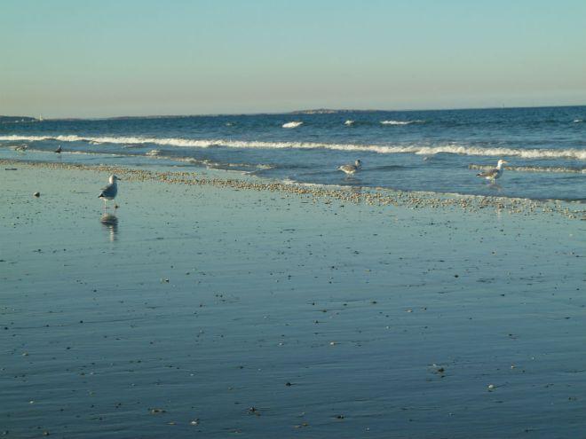 Nantasket Beach # 1