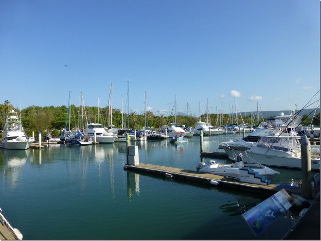 port_douglas_harbor.jpg