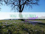 Fun things to do this March in Stuttgart