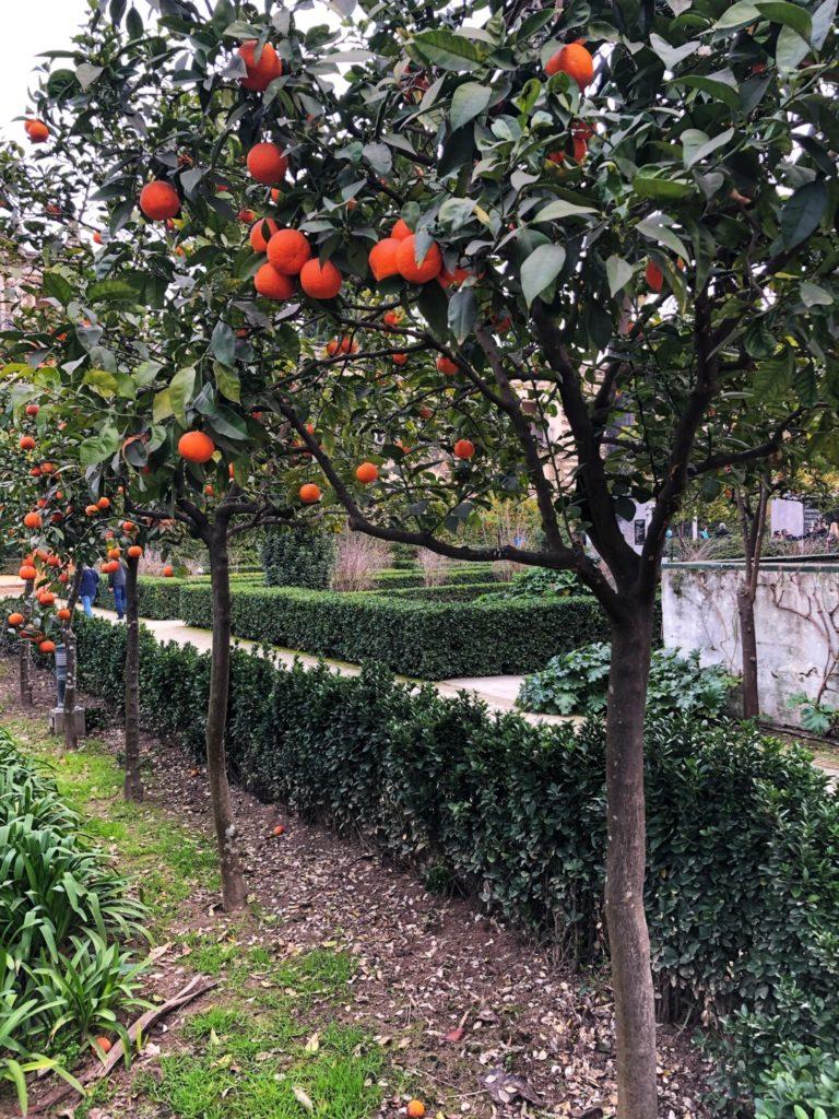 Jardin du Alcazar
