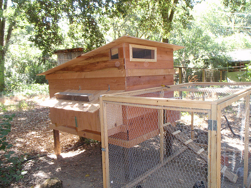 Homesteading helps your self sufficiency substantially.