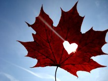 heart_leaf_by_TerrificGirl