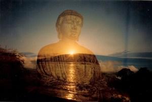Buddhanellavalle