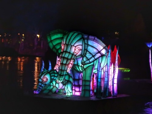 rivers of light at Animal Kingdom Disney World