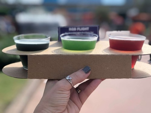 Epcot Food and Wine Festival best food Disney World 2018