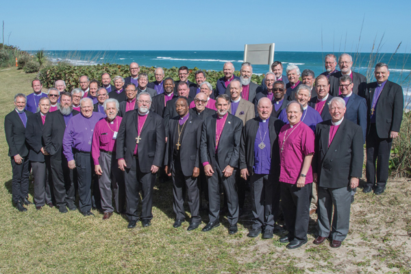 ACNA Communiqué Reflects an Emerging Institution