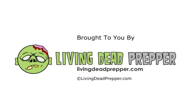 Write For Living Dead Prepper