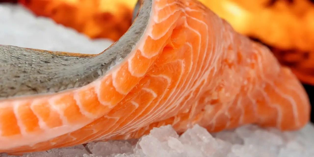 Frozen Food Long Term Food Storage Cheat Sheet