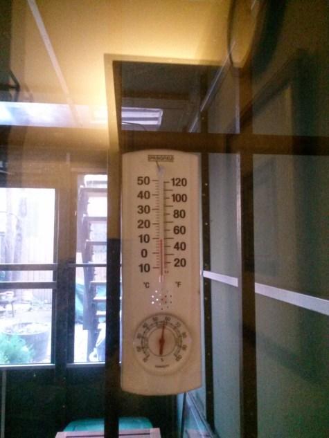 BklynThermometer1215