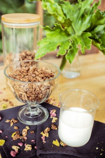 Cacao-Grain Free (Cacao, Almond, Coconut, Sunflower Seed, Chia, Flax)
