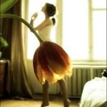 Petal dancer