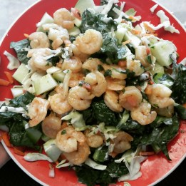 Shrimp Salad: lettuce, 1 cup coleslaw mix, 1 cup cooked shrimp (I like to season the shrimp with garlic, honey, cayenne pepper, and ground cumin), 1/2 cup green apple slices/chunks, 3 tbs low-fat plain Greek yogurt mixed with 1/4 cup chopped cilantro, 1 tbs honey sprinkled on top!