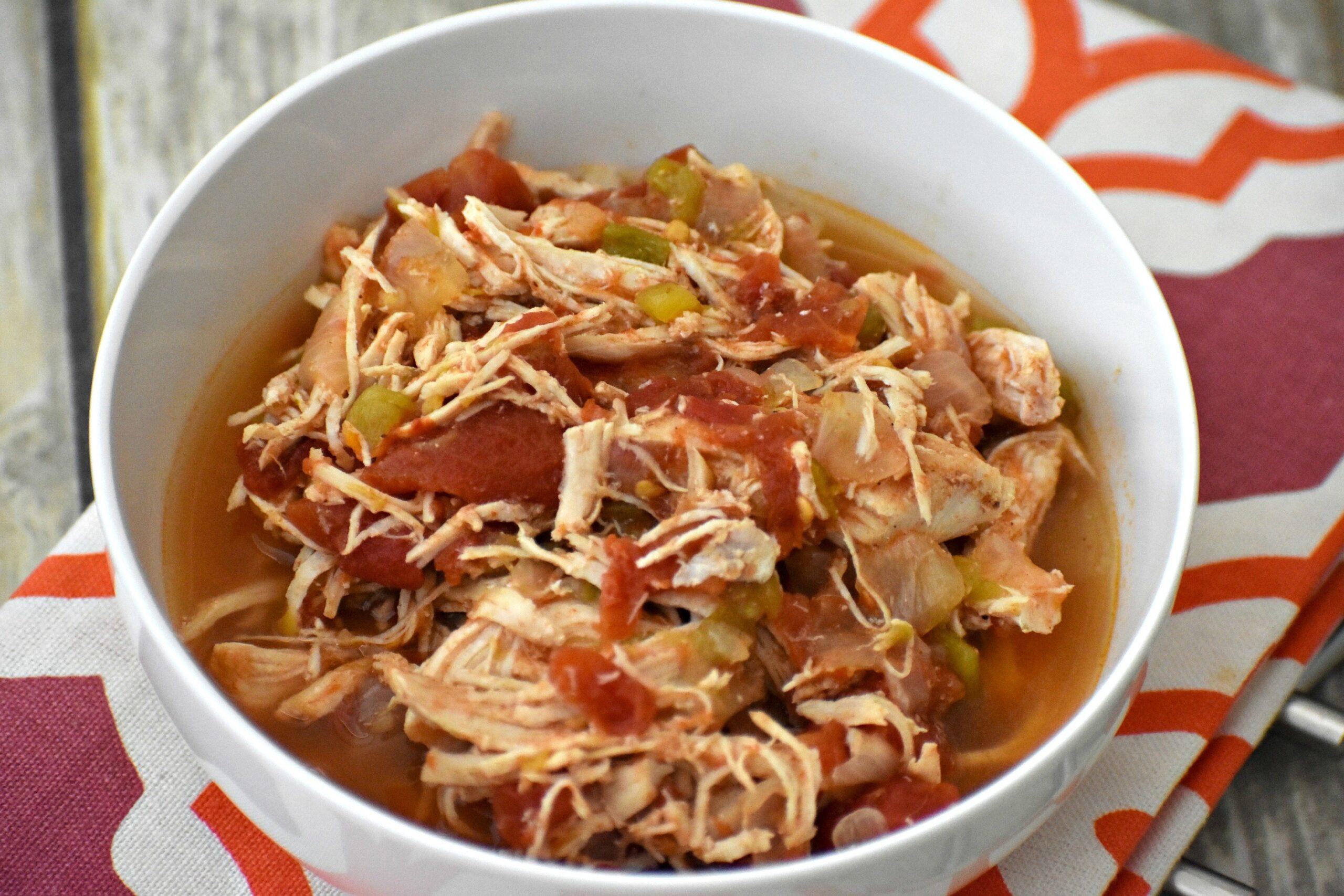Bowl of salsa chicken