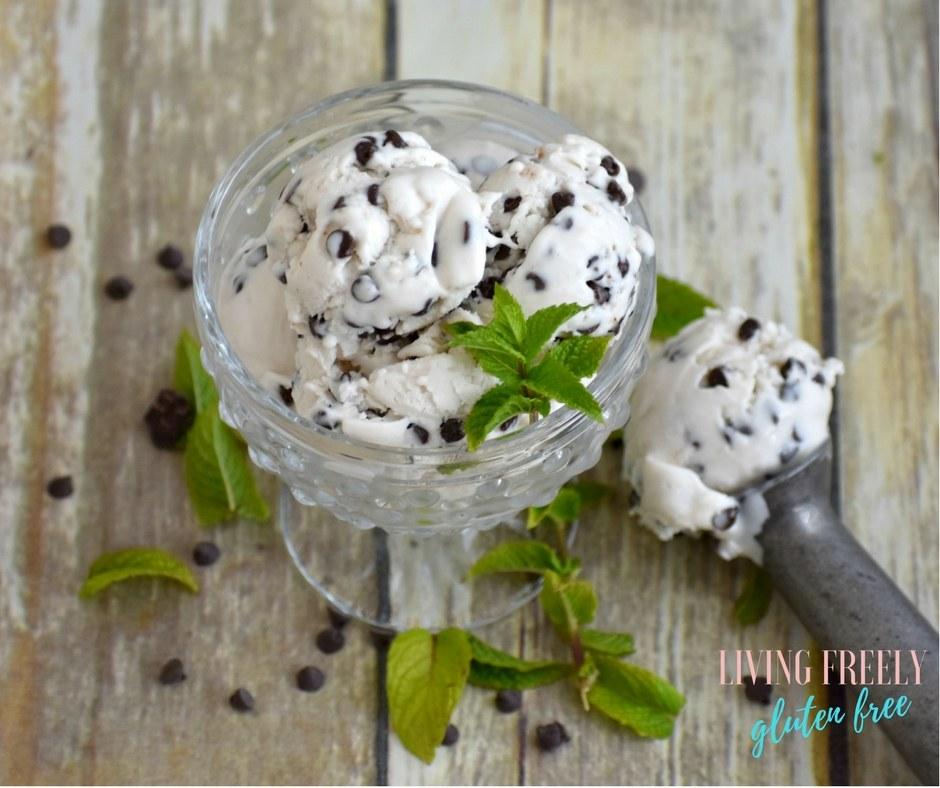 vegan mint chip ice cream in a bowl