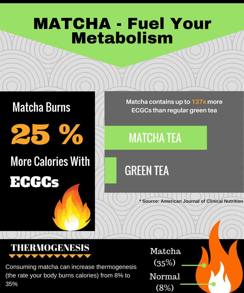 Matcha tea weight loss
