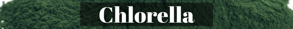 Chlorella green algae superfood