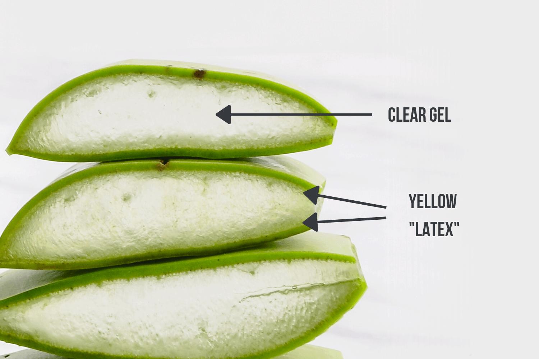 Aloe Vera Gel vs. Latex