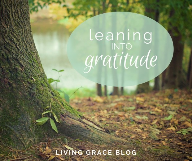 Finding gratitude in the midst of the harder things in life can help let the light in. | Living Grace Blog