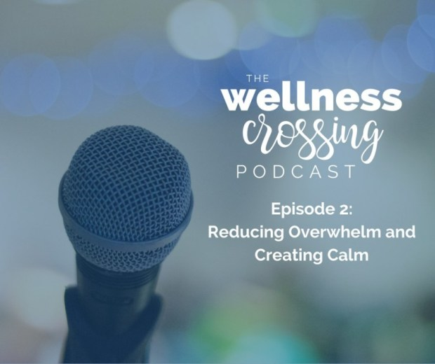 In this episode, we're talking all about overwhelm and how we can bring our minds back to a state of calm. Tune in to hear about my journey through overwhelm and the tools I've learned that help me create more calm when I'm feeling stressed. Click to listen in!