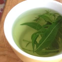 Lemon verbena tea.