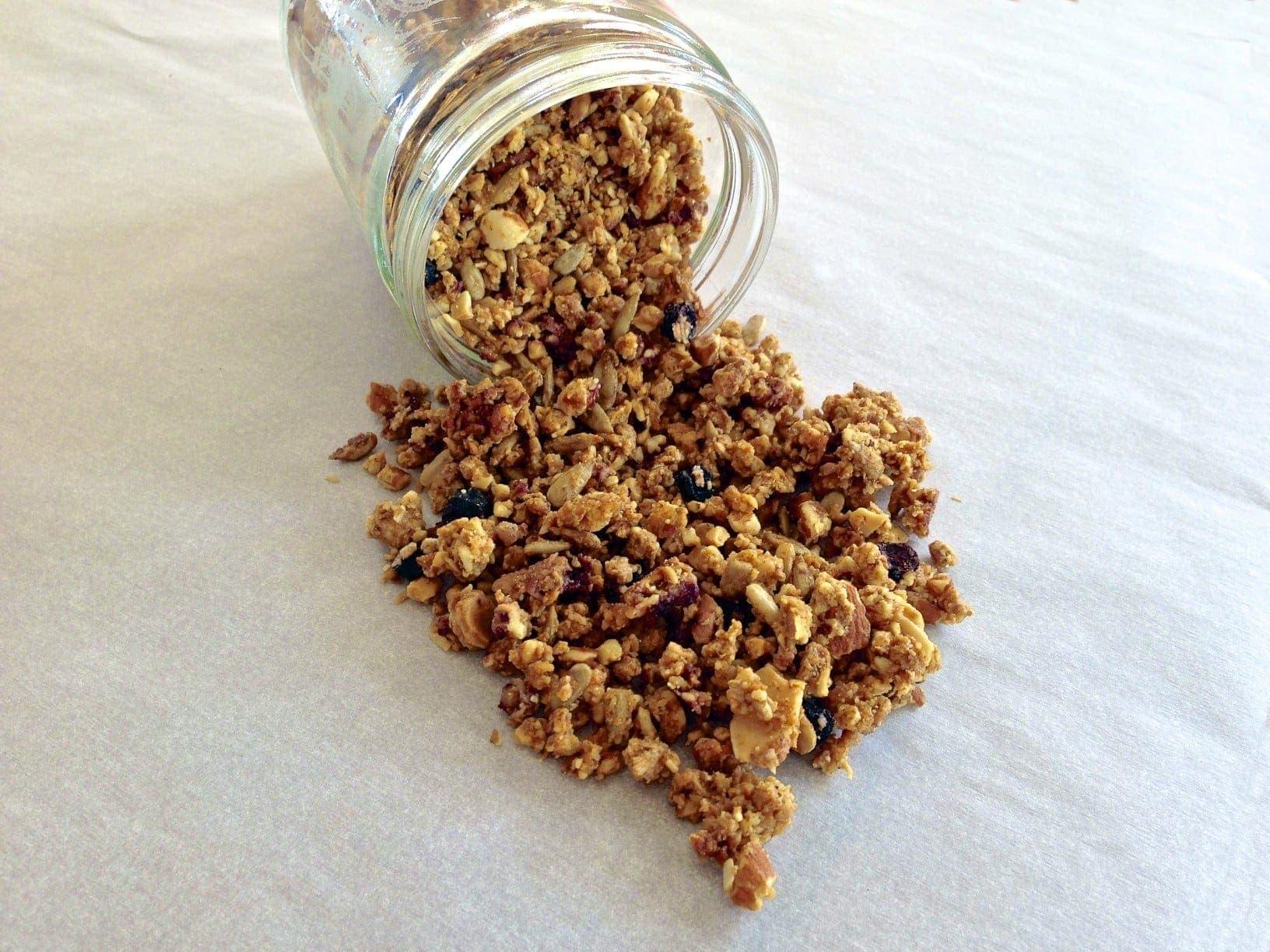 Paleo Blueberry Granola
