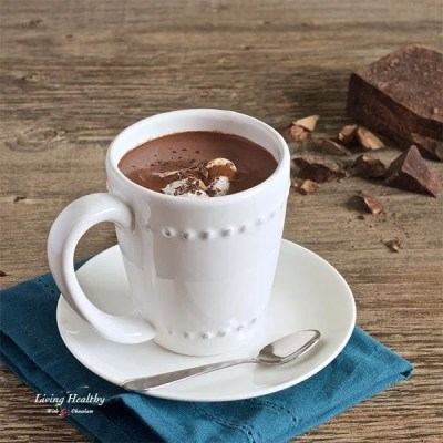Paleo Healthy Homemade French Hot Chocolate Recipe - living healthy with chocolate