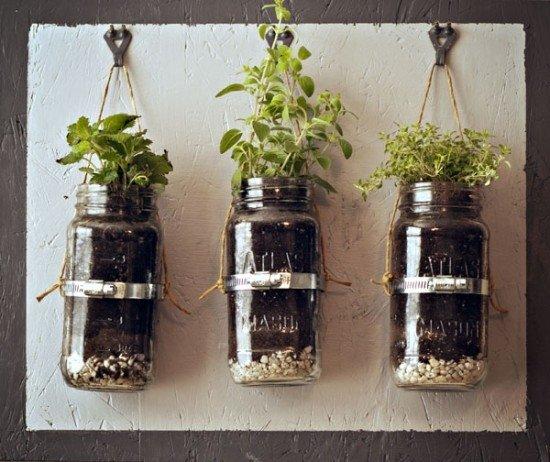 Gardening Ideas with Jars