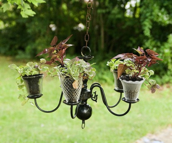 Chandelier garden is elegant and yet innovative way of using old chandelier as a garden