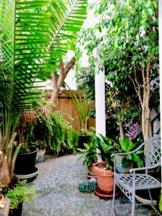 Our Coronado garden