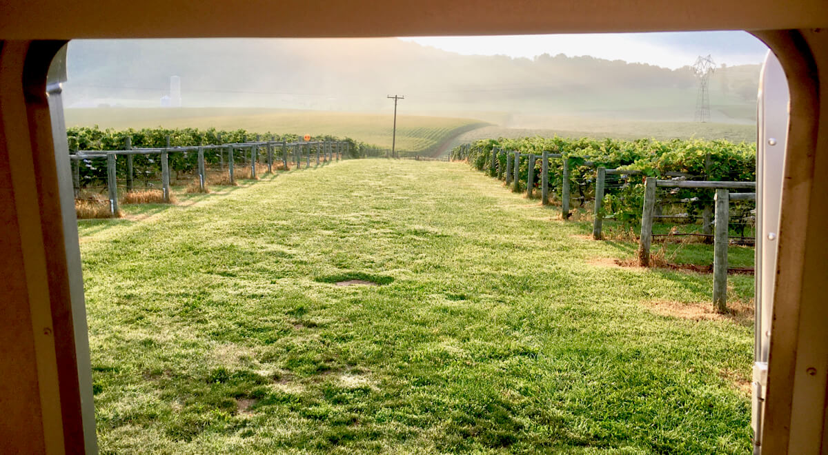 Bluestone Vineyards, Bridgewater Virginia