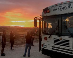 Free Roaming Bus at Sunset