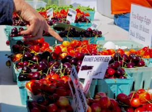 Newport Farmer's Market, Newport, Oregon