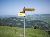 Appenzell 5629